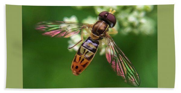 Hover Fly Beach Towel