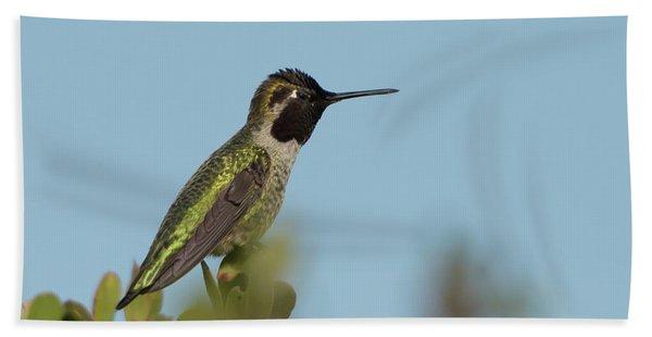 Hummingbird On Watch Beach Towel