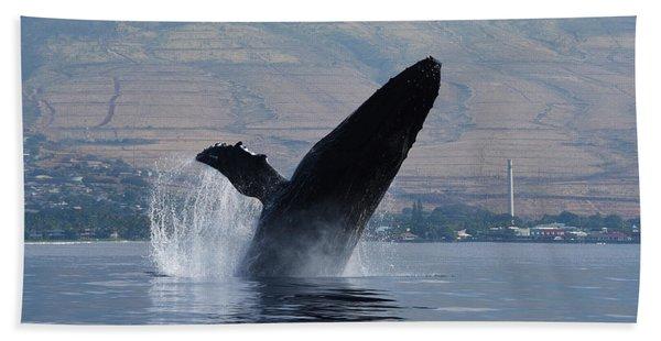 Humpback Whale Breach Beach Towel