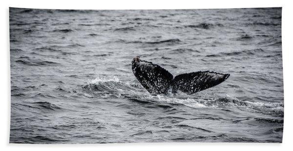 Humpback Whale Tail Beach Sheet