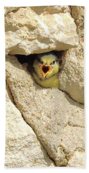 Hungry Chick Beach Sheet
