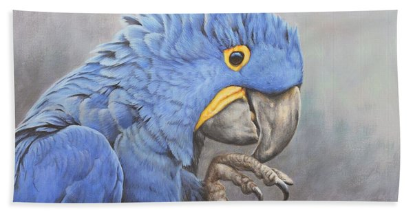 Hyacinth Macaw Beach Towel