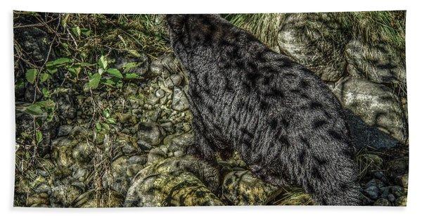 In The Shadows Black Bear Beach Towel