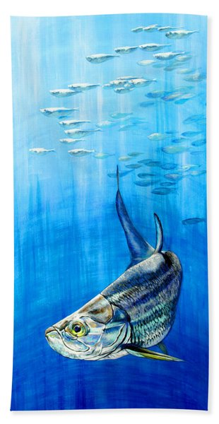 Tarpon Below Beach Towel