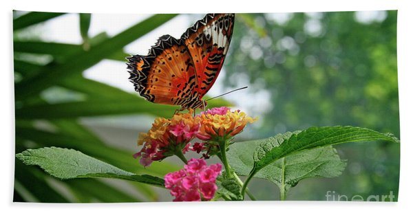 Lacewing Butterfly Beach Towel