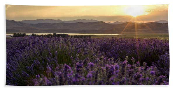 Lavender Glow Beach Towel