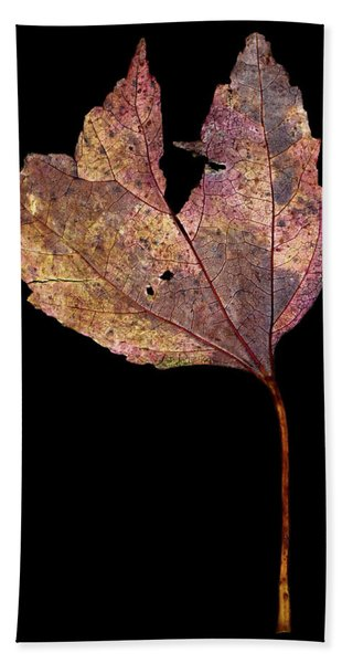 Leaf 11 Beach Sheet
