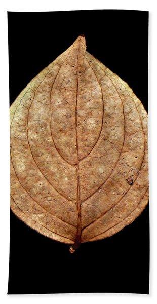 Leaf 12 Beach Towel