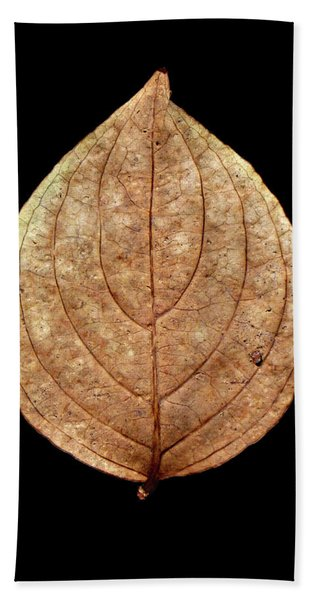 Leaf 12 Beach Sheet