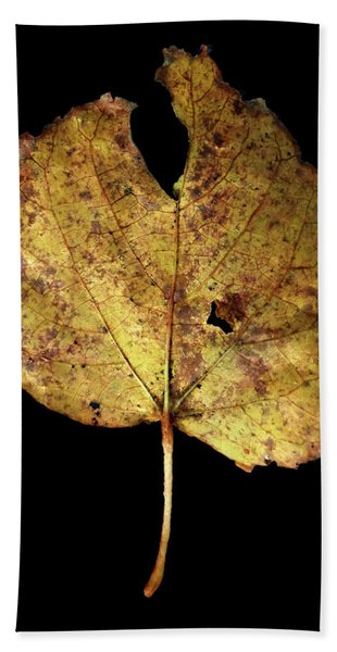 Leaf 13 Beach Sheet