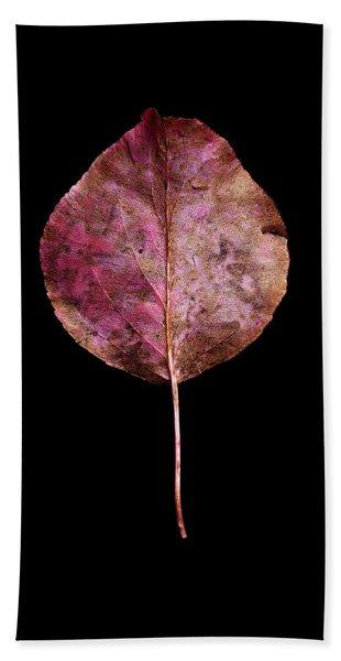 Leaf 20 Beach Sheet