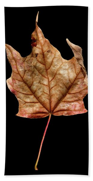 Leaf 4 Beach Sheet