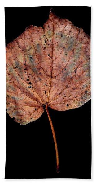 Leaf 8 Beach Sheet