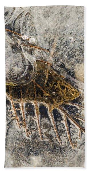 Leaf Veins In Ice Beach Towel