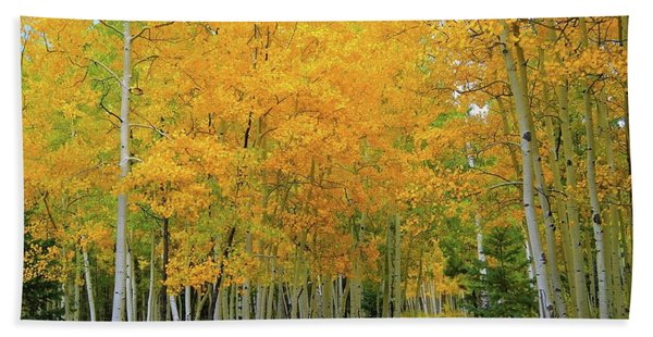 Lockett Meadow A Moment In Time Beach Towel