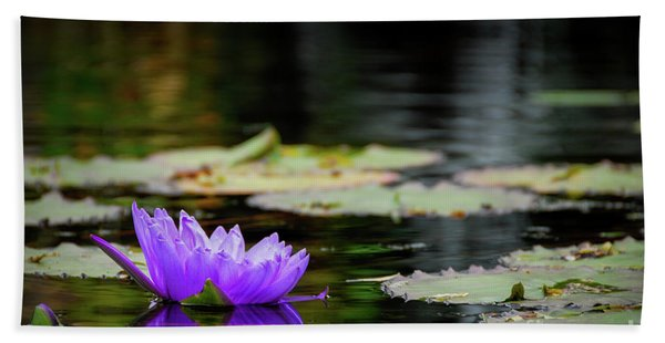 Lone Water Lilly Beach Towel