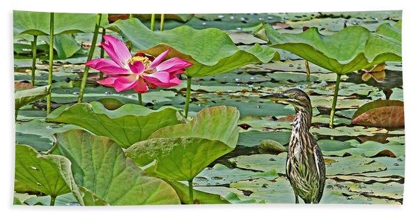 Lotus Blossom And Heron Beach Towel