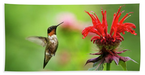 Male Ruby-throated Hummingbird Hovering Near Flowers Beach Towel