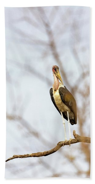 Marabou Stork In South Africa Beach Towel