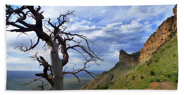 Beach Towel featuring the photograph Mesa Verde Mood by Skip Hunt