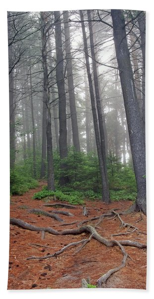 Misty Morning In An Algonquin Forest Beach Sheet