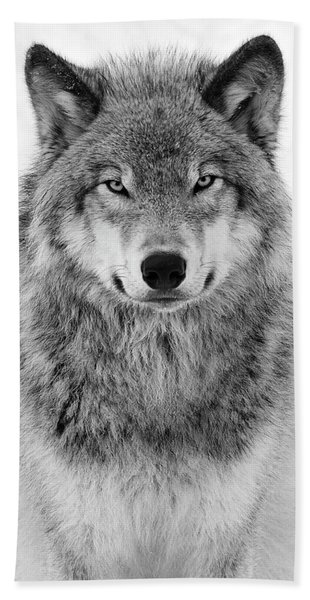 Monotone Timber Wolf  Beach Towel