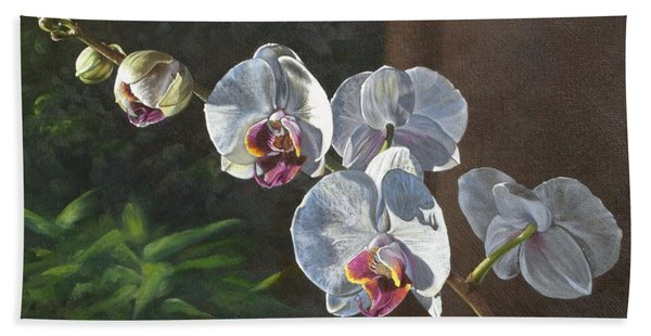 Morning Phaleanopsis Beach Towel