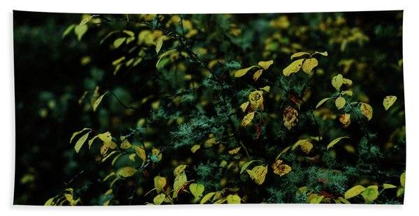 Moss In Colors Beach Towel