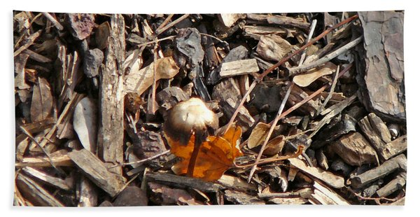 Mushroom With Autumn Leaf Beach Towel