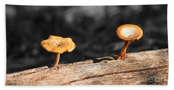 Mushrooms On A Branch Beach Towel