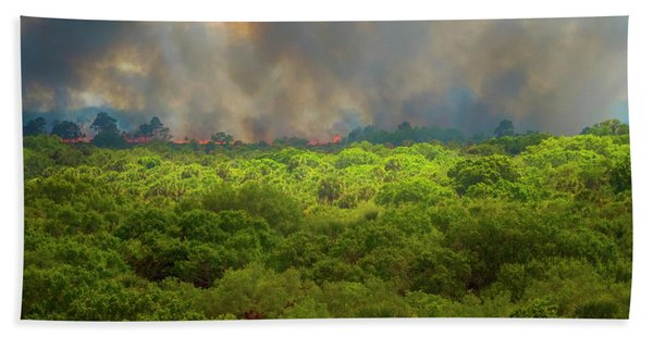 Beach Towel featuring the photograph Myakka River Burn by Tom Singleton