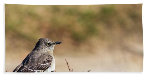 Northern Mockingbird Sitting On Top Of A Hedge Beach Towel