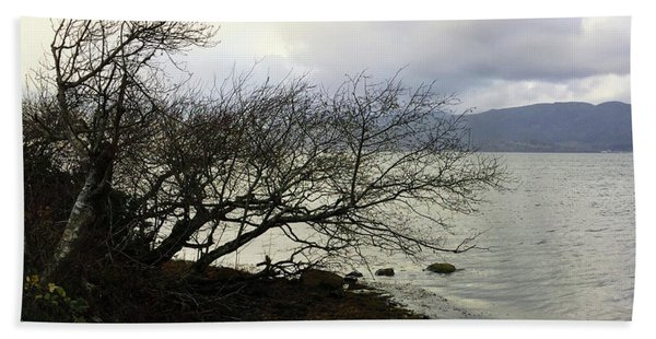 Old Tree By The Bay Beach Towel
