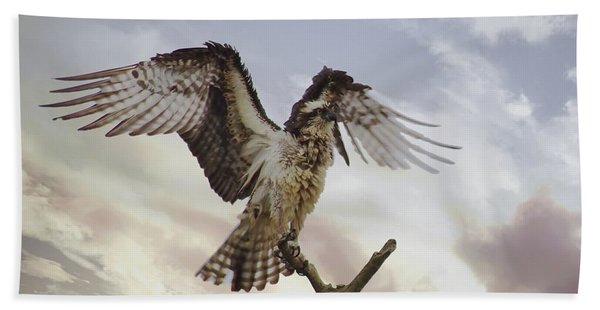 Osprey Wing Spread Beach Towel