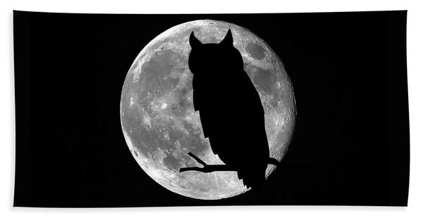 Owl Moon Beach Towel
