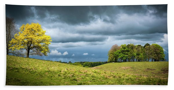 Beach Towel featuring the photograph Petworth Dark And Light by Michael Hope