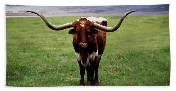 Photo Texas Longhorn A010816 Beach Towel