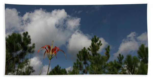Pine Lily And Pines Beach Towel