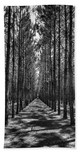 Pine Plantation 5655_6_7 Beach Towel
