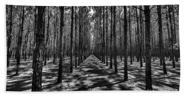 Pine Plantation Wide Beach Towel