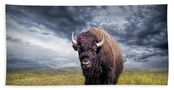 Plains Buffalo On The Prairie Beach Sheet