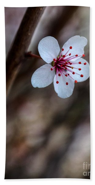 Plum Flower Beach Towel