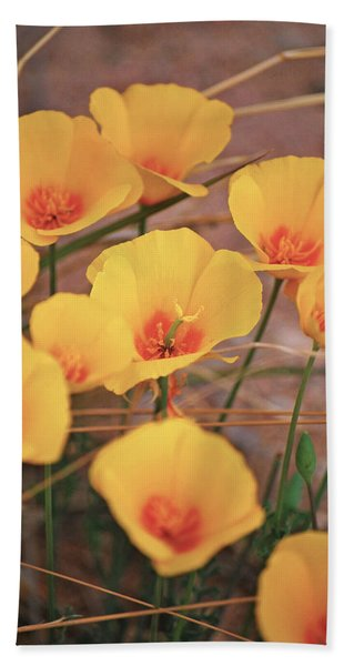 Poppies On Mount Lemmon Beach Towel