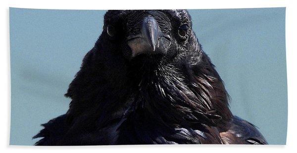 Portrait Of A Raven Beach Towel
