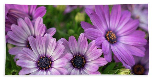 Pretty In Purple Beach Towel