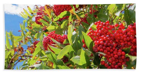 Red Berries, Blue Skies Beach Towel