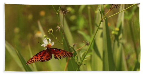 Red Butterfly In Daisy Field Beach Towel