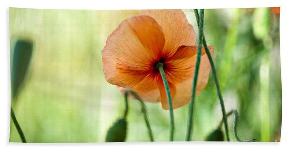 Red Corn Poppy Flowers 02 Beach Towel