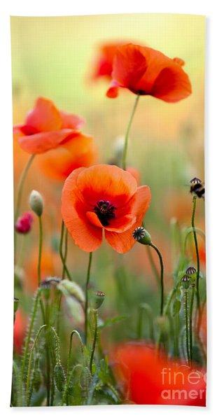Red Corn Poppy Flowers 06 Beach Towel