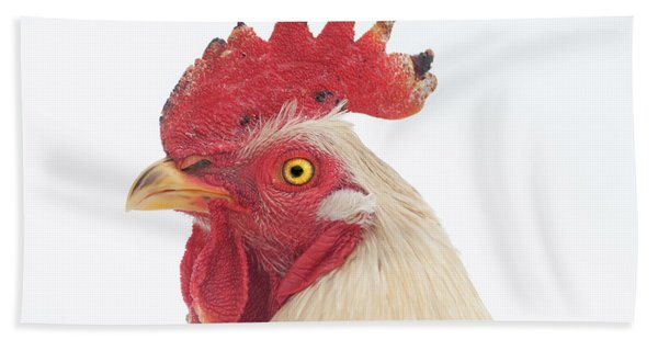 Rooster Named Spot Beach Towel